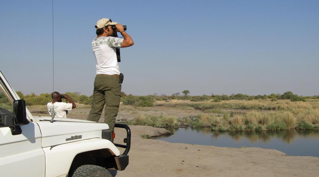 Projects Abroad volontärer kartlägger vilda djur i Wild at Tuli-reservatet i Botswana